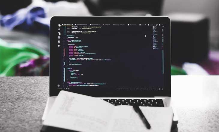 Web development & designing solutions